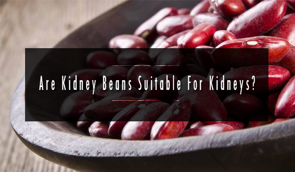 Are Kidney Beans Suitable For Kidneys, myanmar beans, bean, pulse, urad, myanmar pulses,