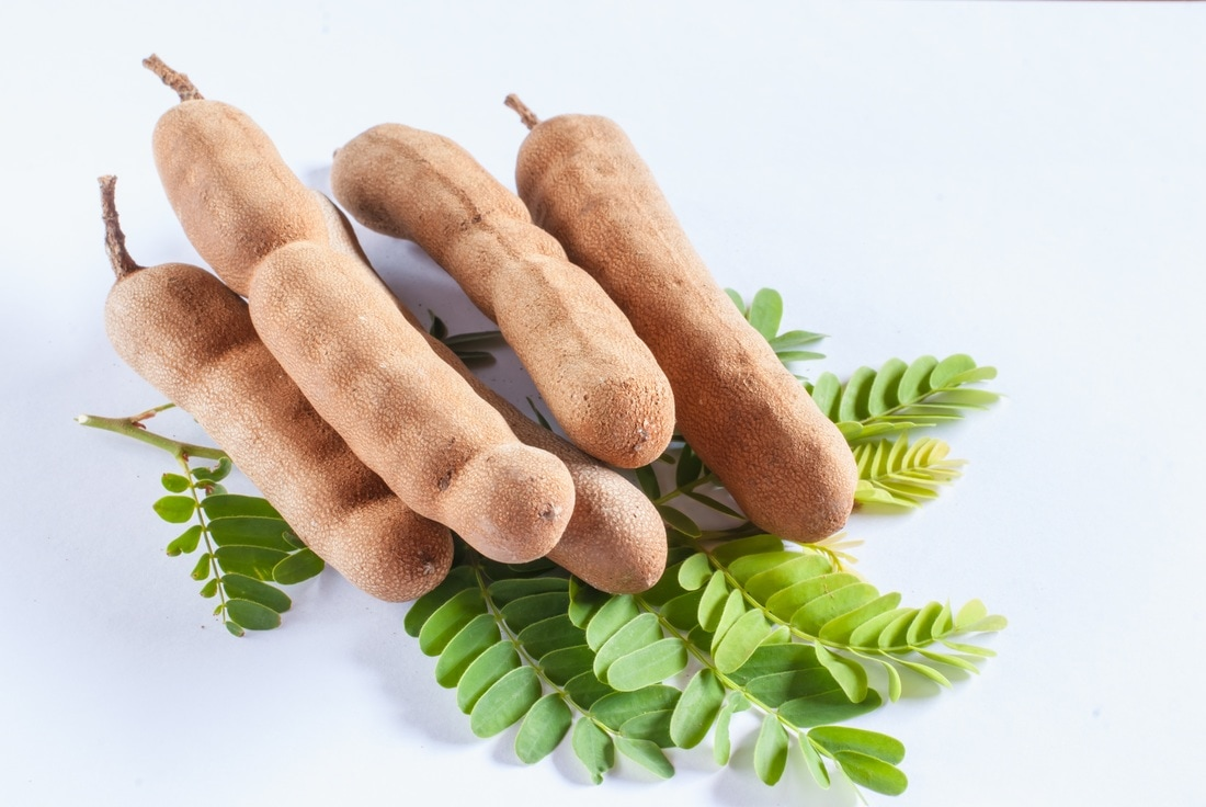 Top 10 Amazing Health Benefits Of Tamarind, Myanmar Tamarind Seeds, Myanmar Tamarind, buy tamarind seed in myanmar